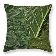 Natural Abstract 39 Throw Pillow