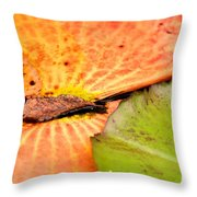 Natural Abstract 40 Throw Pillow