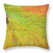 Natural Abstract 42 Throw Pillow
