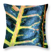 Natural Abstract 6 Throw Pillow