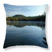 Natural Arrow Throw Pillow