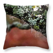 Natural Bling Strings Throw Pillow