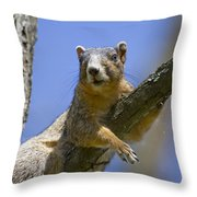 Natural Blues Throw Pillow by Betsy Knapp