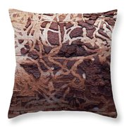 Natural Carvings Throw Pillow