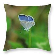 Natural Lace  Throw Pillow