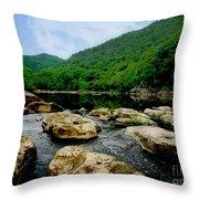 Natural Pangaea  Throw Pillow by Lj Lambert