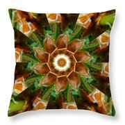 Natural Pinwheel Throw Pillow
