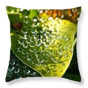 Natural Rhinestones Throw Pillow