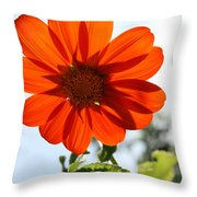 Floral Silhouette Throw Pillow