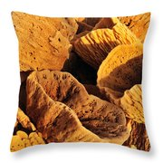 Natural Sponges Throw Pillow