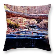 Natural Spring Beauty  Throw Pillow