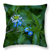Natural Wonders Throw Pillow