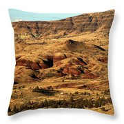 Naturally Painted Hills Throw Pillow