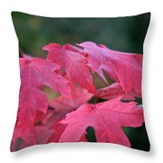 Naturally Vibrant Throw Pillow