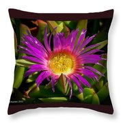Nature Aglow Throw Pillow