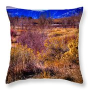 Nature At It's Best In South Platte Park Throw Pillow