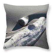 Nature Coastal Art Prints Driftwood Sand Dunes Throw Pillow