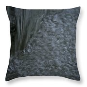 Nature Made Bubble Pack Throw Pillow
