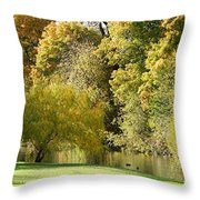 Nature Of The Fall Throw Pillow