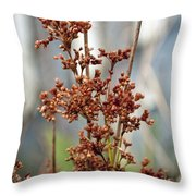 Nature Overlooked Throw Pillow