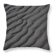 Nature Patterns Series - 65 Throw Pillow