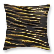Nature Patterns Series - 67 Throw Pillow
