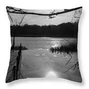 Nature Reflection Throw Pillow