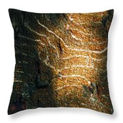 Nature's Abstractions IIi Throw Pillow