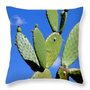 Natures Balancing Act Throw Pillow by Al Bourassa