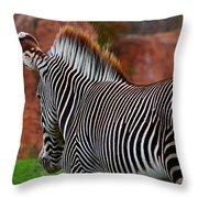 Nature's Barcode Throw Pillow
