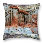 Natures Beauty Throw Pillow
