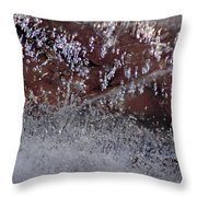Natures Best Etching  Throw Pillow