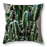 Nature's Cactus Abstract 2 Throw Pillow