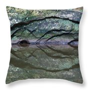 Nature's Carving Throw Pillow