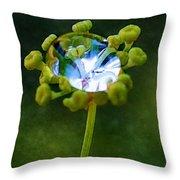 Nature's Diamond Ring Throw Pillow
