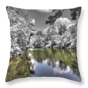 Nature's Dream Throw Pillow