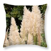 Nature's Feather Dusters Throw Pillow