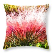 Nature's Fireworks  Throw Pillow
