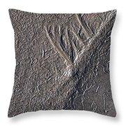 Natures Freeway Throw Pillow