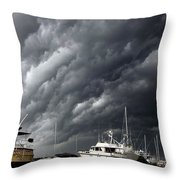 Nature's Fury Throw Pillow by Karen Wiles