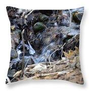 Natures Ice Maker Throw Pillow