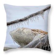Natures Ice Sculptures 3 Throw Pillow