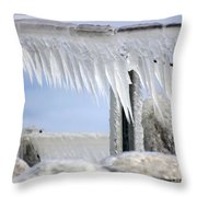 Natures Ice Sculptures1 Throw Pillow