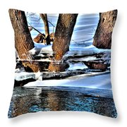 Nature's Icy Abstract No.2 Throw Pillow