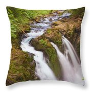 Nature's Majesty Throw Pillow