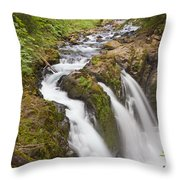 Nature's Majesty II Throw Pillow