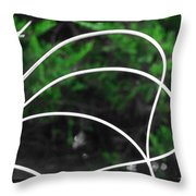 Nature's Natural Curves Throw Pillow