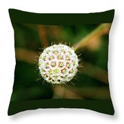 Nature's Perfect Orb Throw Pillow