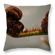 Nature's Red Carpet Unfurling Throw Pillow