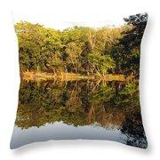 Natures Reflection Guatemala Throw Pillow